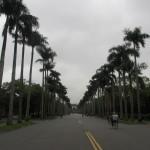 大学生気分で台湾大学をお散歩